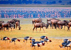Национальный парк озера Маньяра